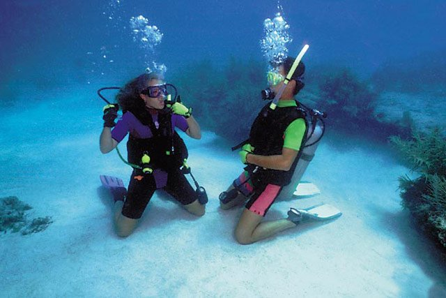 Florida Keys Diving Snorkeling Monroe County Florida Keys - The snorkeling guide to florida 10 spots for underwater exploring