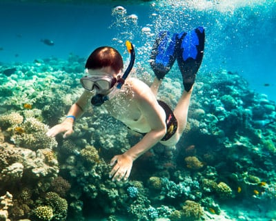 Lower Keys Snorkeling Charters