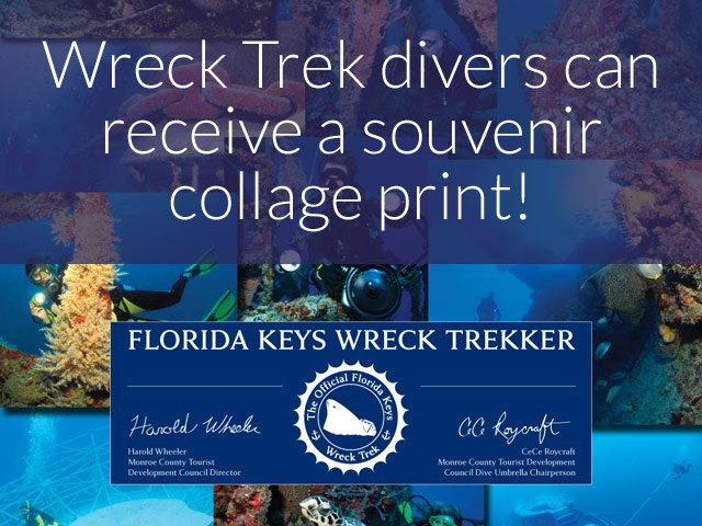 Wreck Trek divers can receive a souvenir collage print!