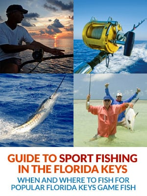 Guide to Sport Fishing in the Florida Keys