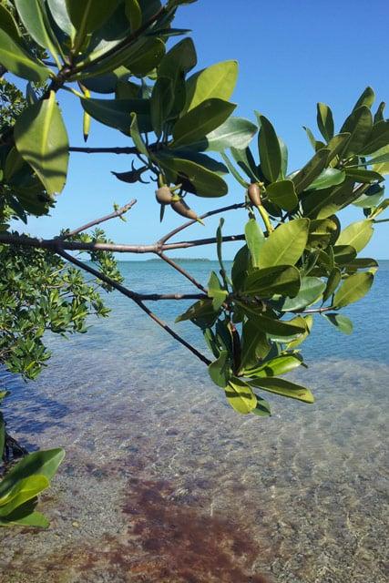 Incontri in Florida Keys