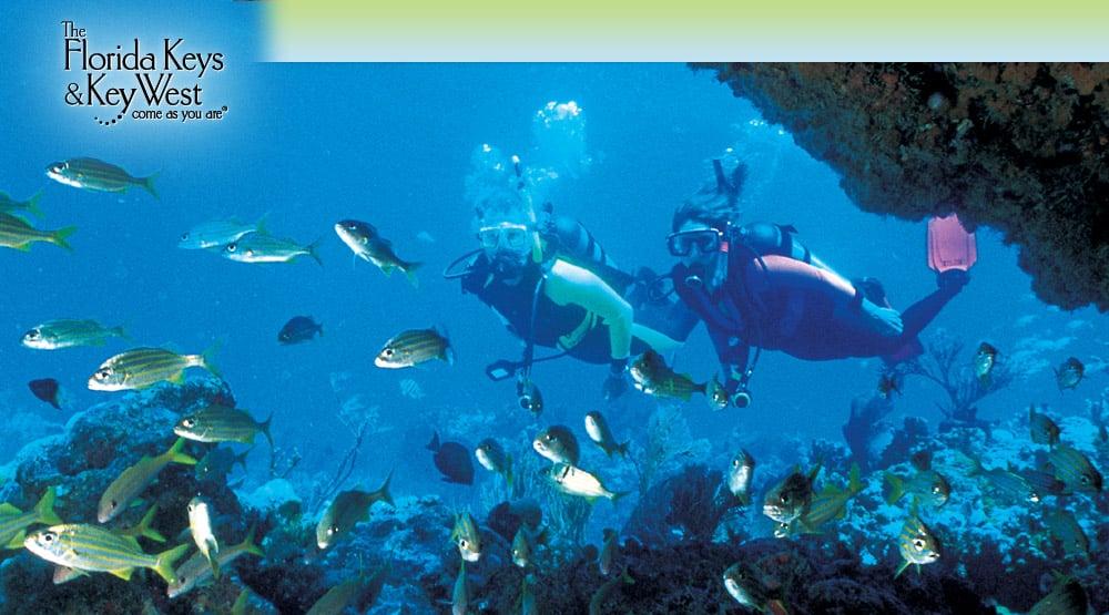 Florida Keys Scuba Diving Vacation Planning