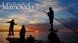 Browse all Islamorada Attractions