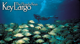 Browse all Key Largo Attractions