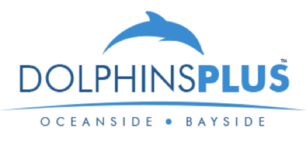 Dolphins Plus Bayside