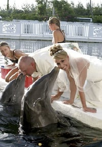 Dolphin themed marriage vows in Islamorada