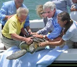 Richie Moretti, Turtle Champion