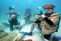 Underwater band