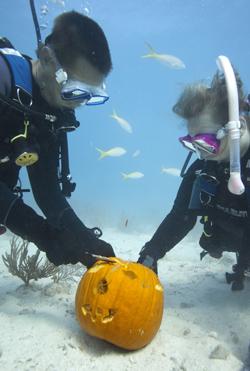 underwater pumpkin carving Key Largo