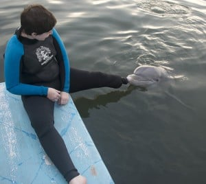 A dolphin touches the prosthetic belonging to U.S. Army medic Rachael Rodgers at Dolphin Research Center in Marathon, Fla.