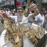 Mike Donovan sifts through a bucket of Florida spiny lobster at Lobsterfest 2015 on Key West's Duval Street as festival-goers line up for a seafood feast. The annual event celebrates the first weekend of Florida's lobster season, which runs from Aug. 6 through March 31 each year. (Photo by Rob O'Neal, Florida Keys News Bureau)