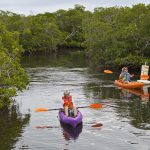 Pennekamp Park kayakers Key Largo