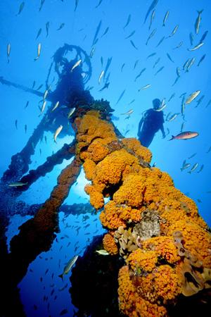 Divers on Duane shipwreck Key Largo