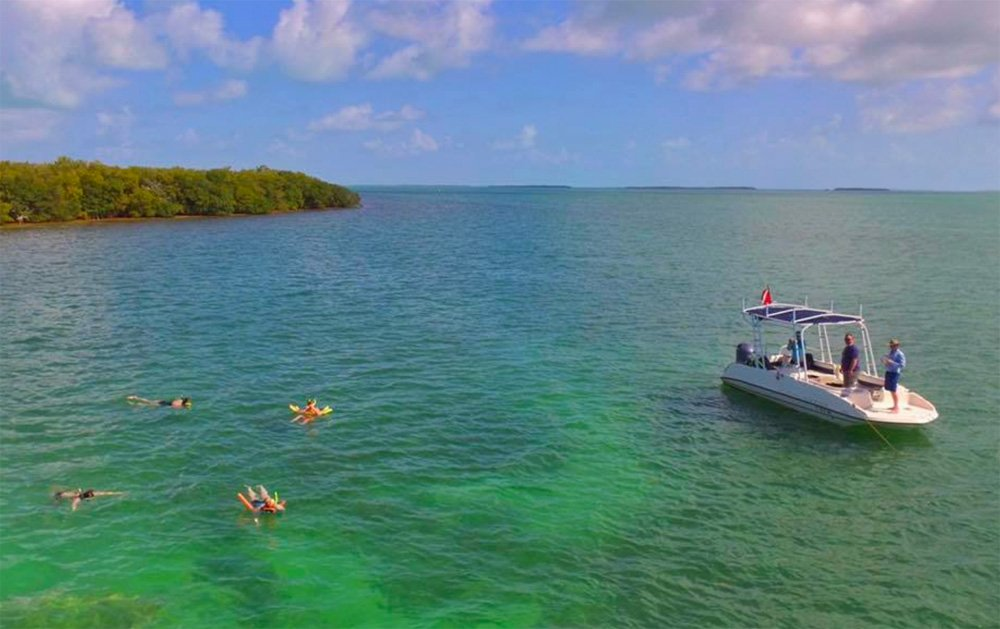snorkelers off Islamorada