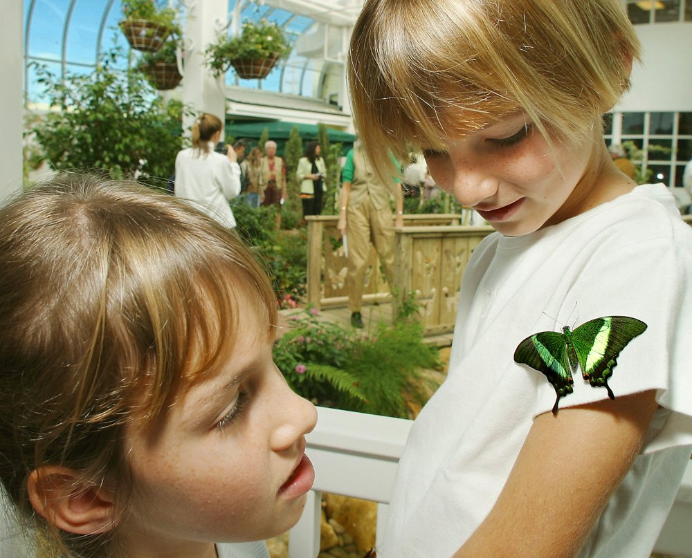 kids at Key West Butterfly Conservatory