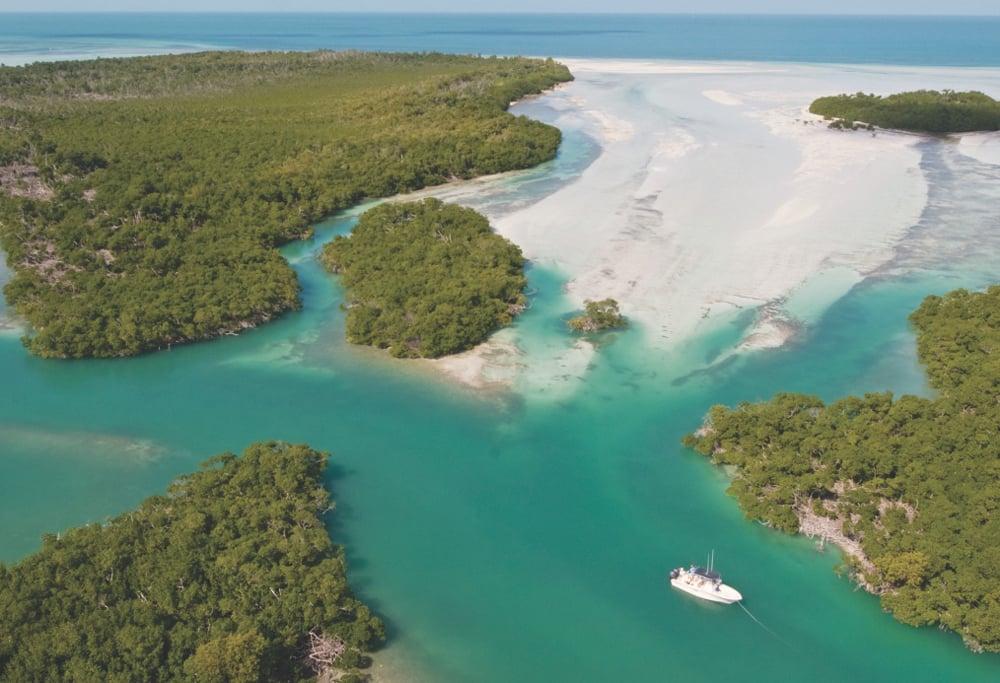 Florida Keys land and water environment