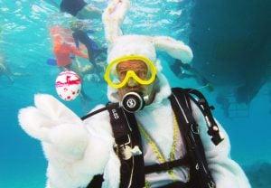 Underwater Easter Bunny Key Largo