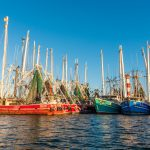 Stock Island shrimp boats Florida Keys