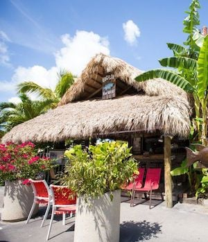 Hogfish Bar Florida Keys