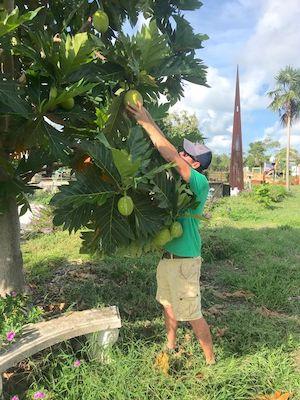 Patrick Garvey Grimal Grove Big Pine Key