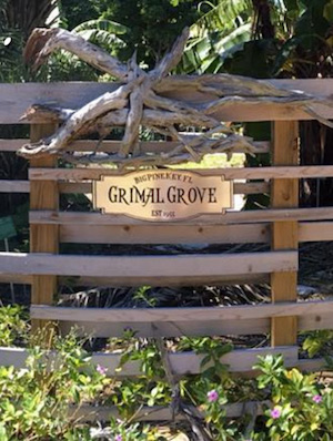 Grimal Grove Big Pine Key