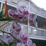 Equator Resort Florida Keys