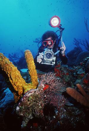Stephen Frink diving