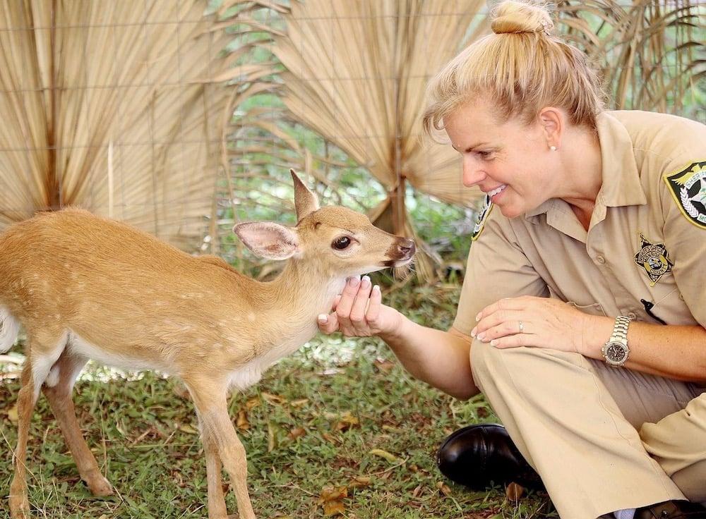 Jeanne Selandar Florida Keys Sheriff's Animal Farm