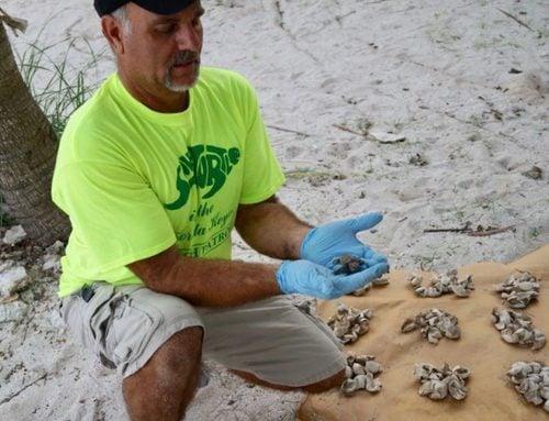 Harry Appel: Steward of the Keys' Endangered Wildlife