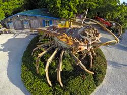 giant lobster Florida Keys
