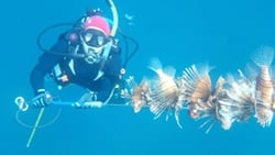 Keys woman diver with lionfish