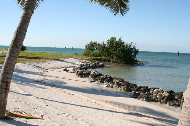 Sombrero Beach, at the end of Sombrero Beach Road at MM 50 oceanside in Marathon, is a well-maintained Middle Keys gem.