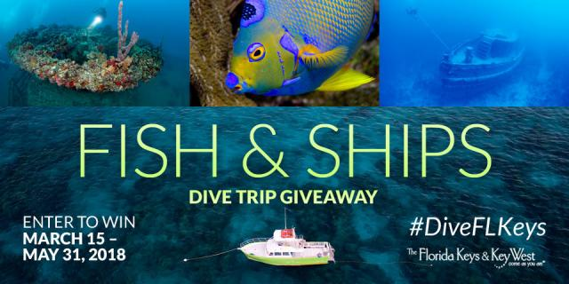 Get Social With the Florida Keys for Chance to Win 'Fish & Ships' Diving Vacation