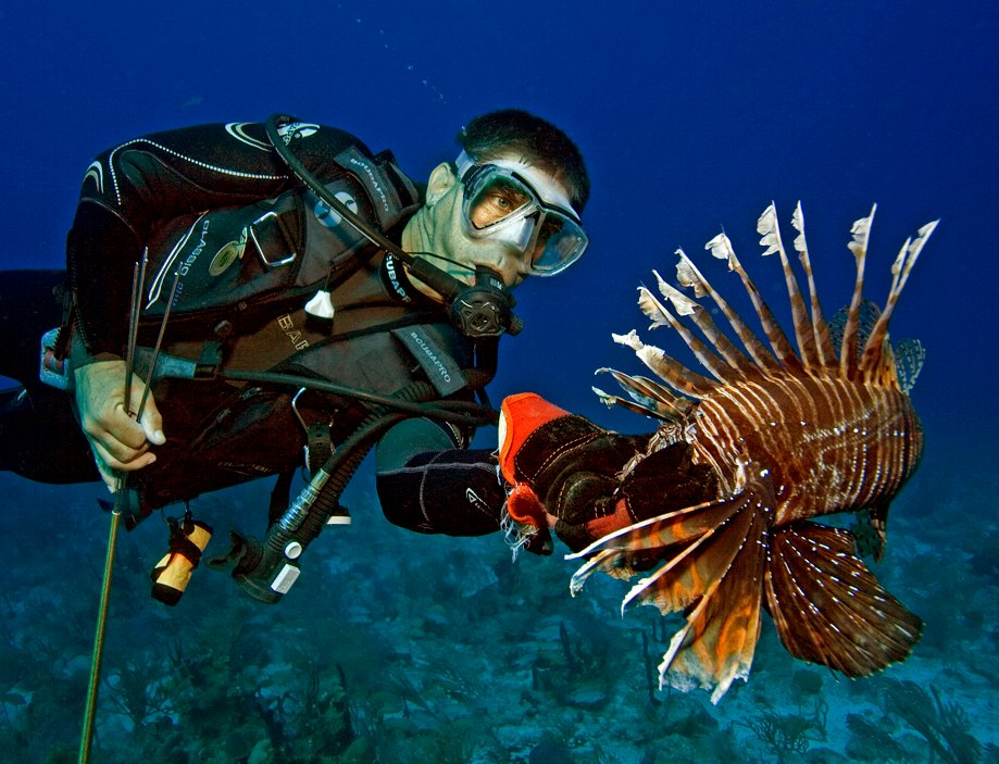 Capture, Clean and Cook Your Own Lionfish at Key Largo Derby Sept. 14-16
