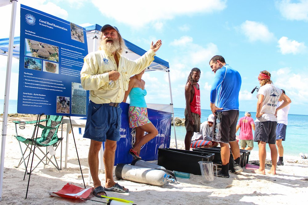 Florida Keys Ocean Festival to Celebrate Marine Environment Dec. 1
