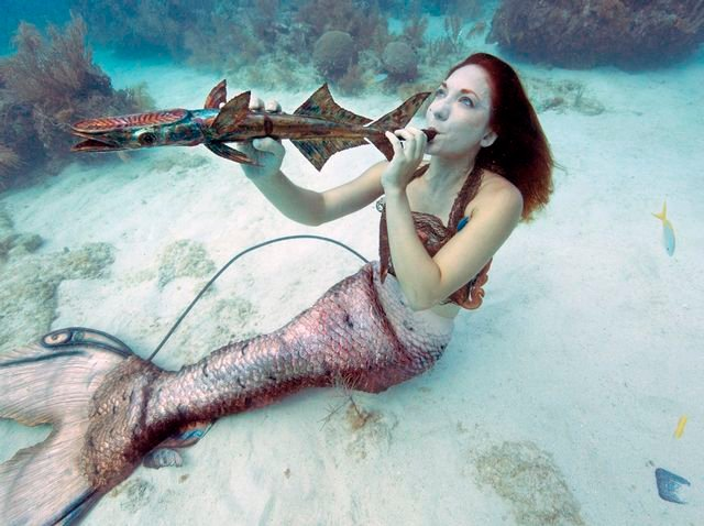 "Divers and snorkelers might even catch ""mermaids"" and other costumed characters performing their own marine melodies."