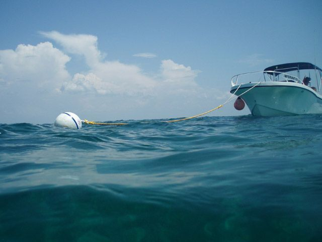 The Nature Consvervancy's RespectOurReefs tips include anchoring well away from coral heads, or using mooring buoys.
