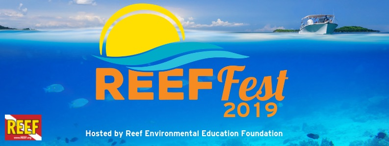 Celebrate Florida Keys Marine Conservation During Key Largo's Annual REEF Fest