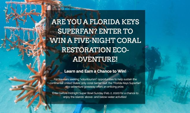 Enter by Super Bowl Sunday to Win a 'Florida Keys Superfan'   Coral Reef Restoration Eco-Adventure