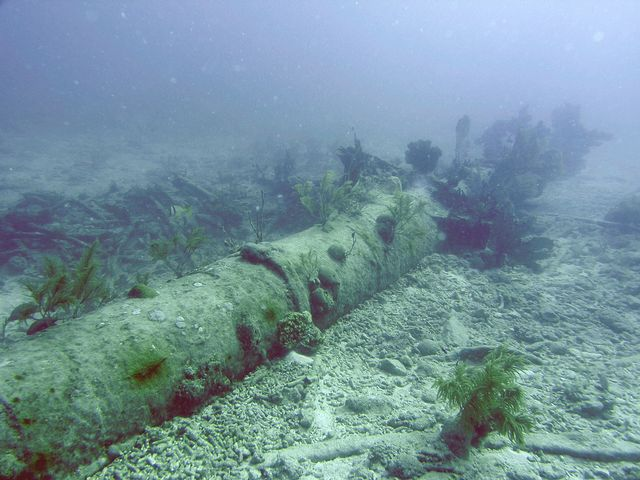 Remains of the 77-foot iron main mast of the Adelaide Baker.  Image: Brenda Altmeier/NOAA