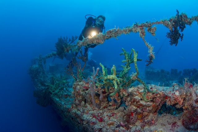 A diver explores the colorful decks of Spiegel Grove. Image: Stephen Frink