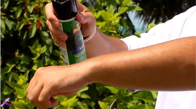 Among preventive measures, health officials recommend the use of mosquito repellents that contain DEET, picaridin or oil of lemon eucalyptus as an active ingredient.