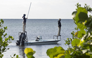 Fishing for bonefish in the backcountry flats, a catch and release sport.