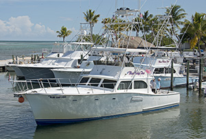Bradeen currently owns and operates two Blue Chip Too charterboats based out of Whale Harbor Marina in .