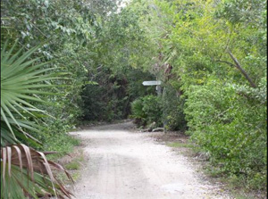 Nature trail at Crane Point, which is named for Keys preservationists Frances and Mary Crane, both ardent horticulturists.
