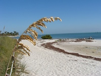 Middle and Lower Florida Keys State Parks Are Protected Playgrounds
