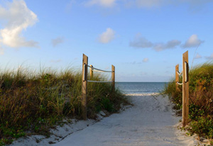 A sandy trail at Curry Hammock State Park. Image: Steve Sammons