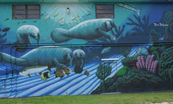 Colorful mural, painted by David Dunleavy and Guy Harvey, adorns the side wall of the Florida Keys History of Diving Museum in Islamorada. Photo by Belinda Serata.