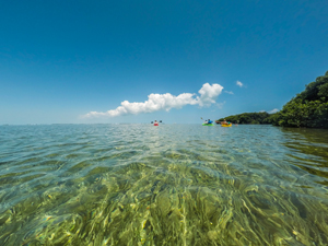 Florida keys make every day earth day not just april 22 florida keys visitors can have meaningful memorable vacations while respecting and helping preserve the keys sciox Images