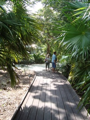 GardenFest to Spotlight Key West Tropical Forest & Botanical ...
